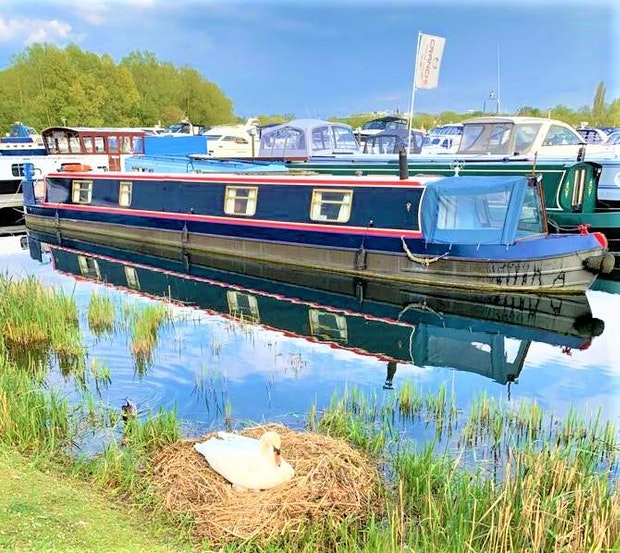 Narrowboat Hixon 57' Cruiser Stern